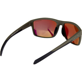 Alpina Nacan I Gafas, gris